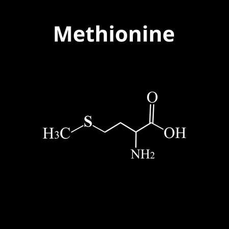 Methionine is an amino acid. Chemical molecular formula of methionine amino acid. Vector illustration on isolated background 向量圖像