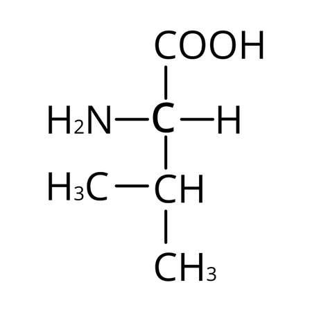 Valine amino acid. Chemical molecular formula of valine amino acid. Vector illustration on isolated background