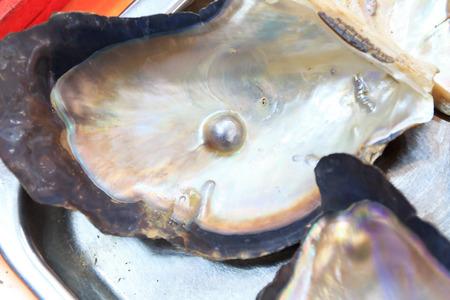Heart shape pearl in shell
