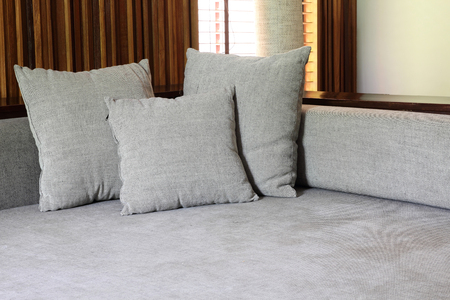 modern living room: living room with modern sofa