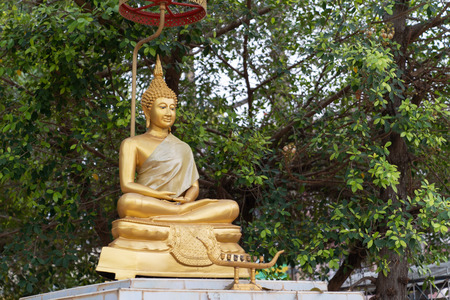Golden Statue Buddha on bokeh tree background, in THAILAND.
