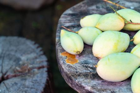 Many fresh green mango on wood table background.