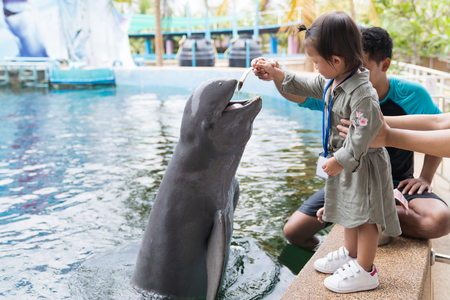 Asian cute baby girl feeding small fish on your hand for dolphin jumping eatting in the aquarium, summer vacation holiday travel, family life style concept.