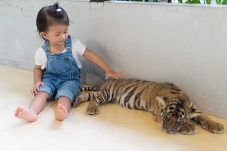 Asian cute baby girl and baby tiger in the park.