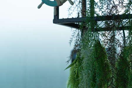 Cafe shop modern interior design with ceiling in living fern plants, plant creative loft chandelier hanging.