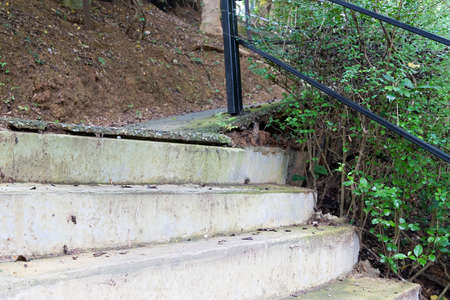 Cement stairway in the forest for walk to hut with some plant and rock stone background.