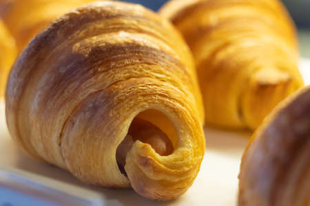 Freshly baked croissants on white dish. Close up. 版權商用圖片