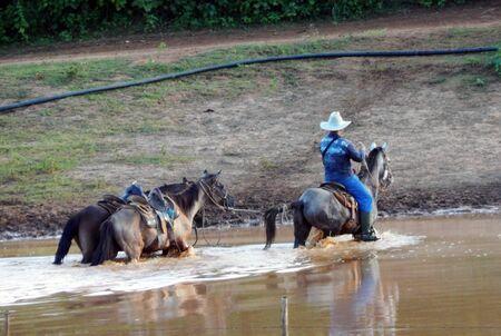 cowboys on cube 写真素材