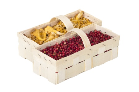 cranberries and golden chanterelle  in wooden boxes on white background
