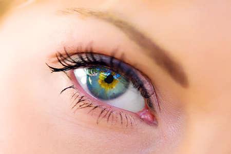 partes del cuerpo humano: La macro hermoso ojo femenino  Foto de archivo