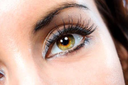 cejas: La macro hermoso ojo femenino  Foto de archivo