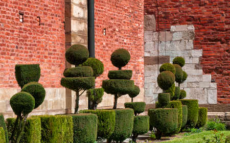 landscaping the trees in the castle of Krakow on a Sunny day Stock Photo