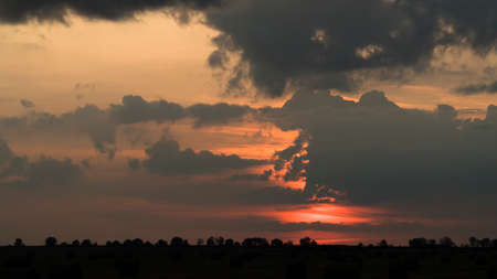 Summer sunset over a rural field Zdjęcie Seryjne