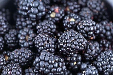 Fresh ripe blackberries on a white background Zdjęcie Seryjne