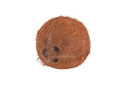 coconut isolated on a white background 免版税图像