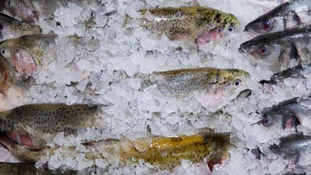 trout in ice on a supermarket shelf. chilled fish Stok Fotoğraf