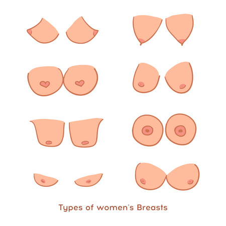 Types of womens Breasts. Womens Breast Icon, Breast Icon Vector illustration