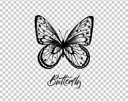 Butterfly. Vector illustration. Elegant butterfly logo for feminine business.