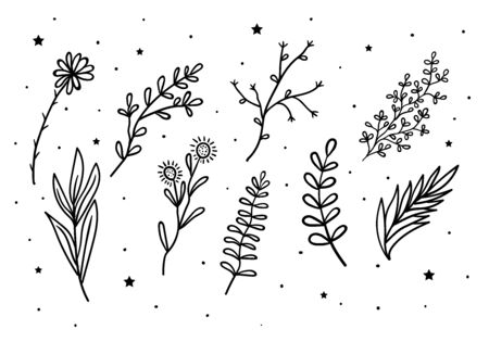 Mystical flowers and branches and leaves with stars. Hand drawn astrology symbol. For print for T-shirts and bags, decor element. Mystical and magical, astrology illustration Illustration