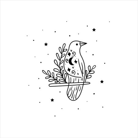 Mystical raven with moon and stars. Stars, constellations, moon. Hand drawn astrology symbol. For print for T-shirts and bags, decor element. Mystical and magical, astrology illustration Illustration