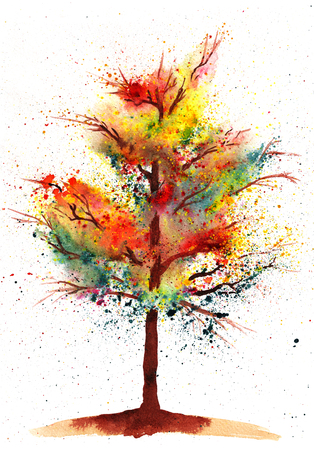autumn tree: Colorful watercolor painting of autumn tree.