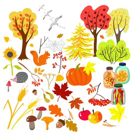 Cute autumn set of plants
