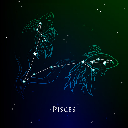 Pisces ( Fishes ) - constellation Vector illustration Illustration