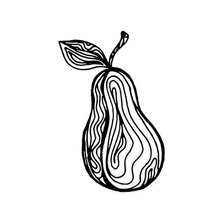 Black ink hand drawn sketch, pear fruit isolated on a white background. Vector illustration Ilustração