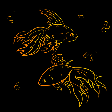 a pair of goldfish and bubbles on a black background. Vector illustration