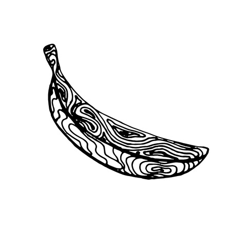 Black ink sketch of banana isolated on a white background. Vector illustration  Ilustração