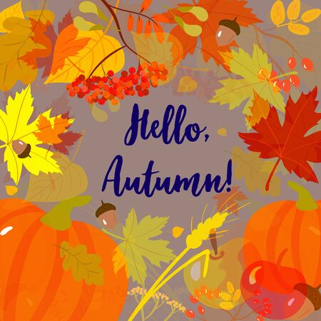 Background with Fall leaves, seasonal harvest and writing Hello Autumn! Forest design elements. Vector illustration Ilustração
