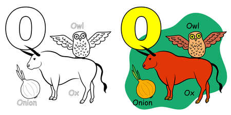 English alphabet coloring book page for children. Letter O is for Owl, Ox, Onion. Vector illustration.