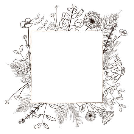 Square minimalistic frame with hand drawn wild forest herbs. Vector illustration.