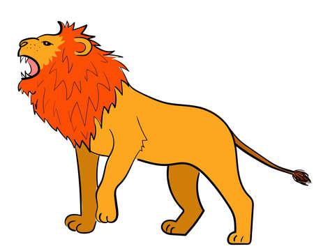 Lion - wild animal in cartoon style. Vector illustration isolated.