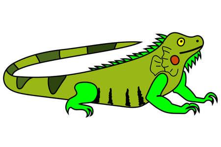 Cartoon Vector Illustration of an Iguana.