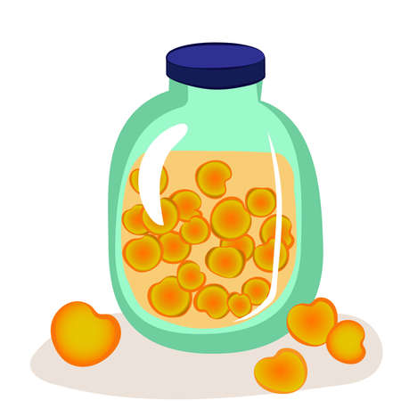 Jar of peach compote. Homemade canned apricots. Fruit juice. Isolated vector illustration. 矢量图像