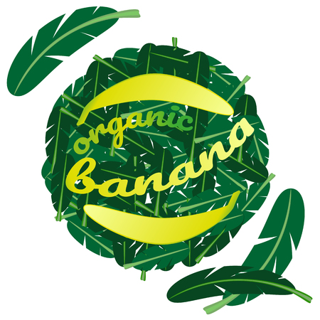 Round pattern of leaves of palm tree and bananas, text - organic banana.Circle can be used for design of market, logo, packaging, flyer.