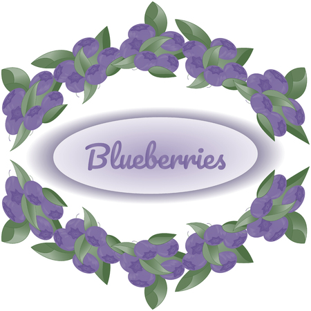 Wreath of bushes of blueberries on white background, in the center text Blueberryies. Vector illustration for design of packaging, stikers, flyers, postcards, posters. Vettoriali