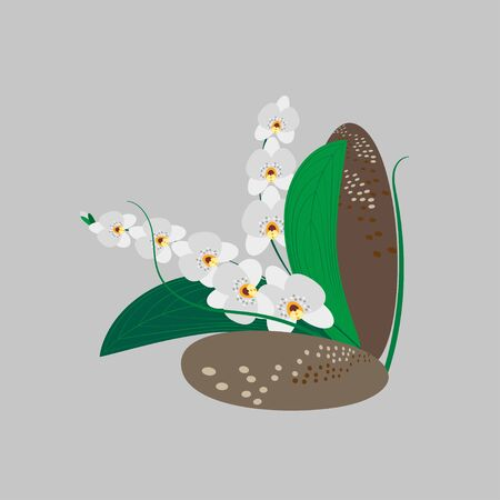 Composition of white orchids and decorative stones. Spa stones and flowers for beauty salon, yoga center. Vector illustration for wedding design, invitation, advertising, business cards, social pages Ilustrace