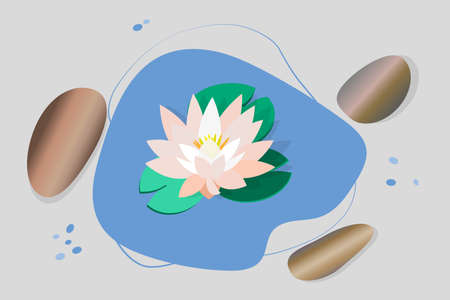 Delicate white lotus flower, water lily, water, stones. 3D image of stones, flowers. Vector illustration for spa salons, yoga studios, relaxation studios. Stock Illustratie