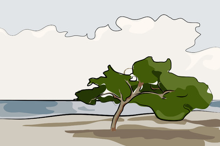 Seascape - Alone tree vector illustration  Vector