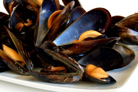 Cooked mussels on white dish