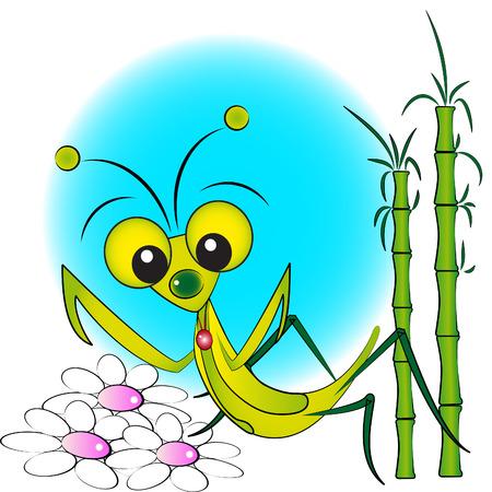 gottesanbeterin: Praying Mantis mit Blumen und Bambus - Kid Illustration, Etikett und n�tzliche G�stebuch Illustration