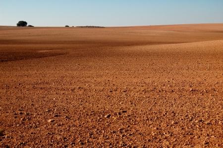 Spanish field in Castilla La Mancha, winter time photo