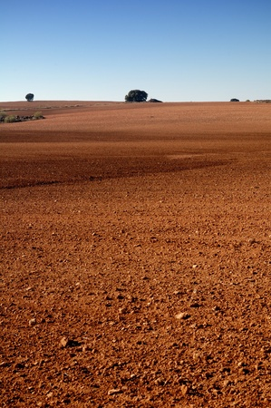 Spanish field in winter with soil detail photo