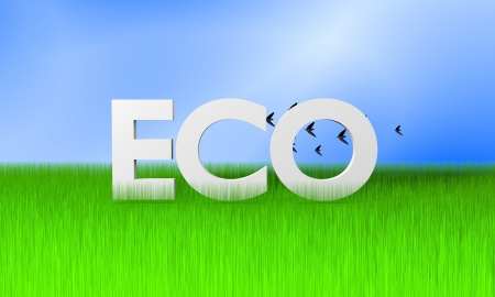 Ecology concept image with grass, blue sky and birds photo