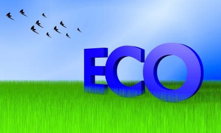 Ecology concept image with grass, blue sky and birds Stock Photo - 13646276