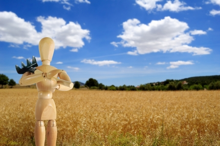 Puppet farmer with rake and wheat field on background Stock Photo - 15697877
