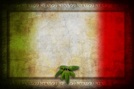 Typical Mexican food: green jalapeno on Mexico flag Foto de archivo