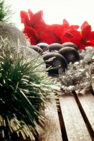 Christmas decoration with poinsettia photo